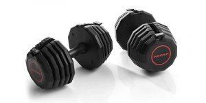 weider adjustable weights