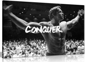 Conquer Canvas Picture Print