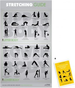 Laminate Stretching Guide Gym Poster