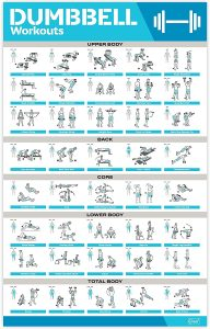 Laminated Large Dumbbell Workout Poster