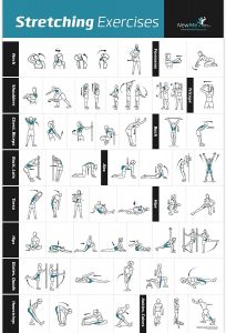 Stretching Exercise Poster